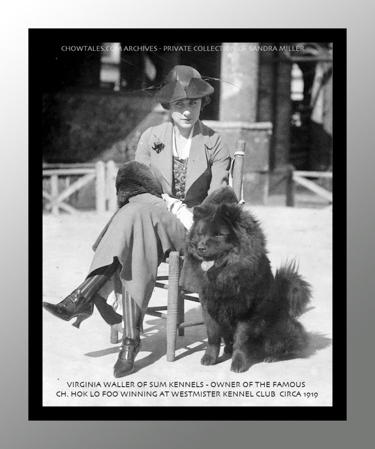 A very rare original photo in my personal collection. This was taken at the Westminster Kennel Club show in 1919 after Virginia Waller breeder/owner won the breed with her stunning black dog.