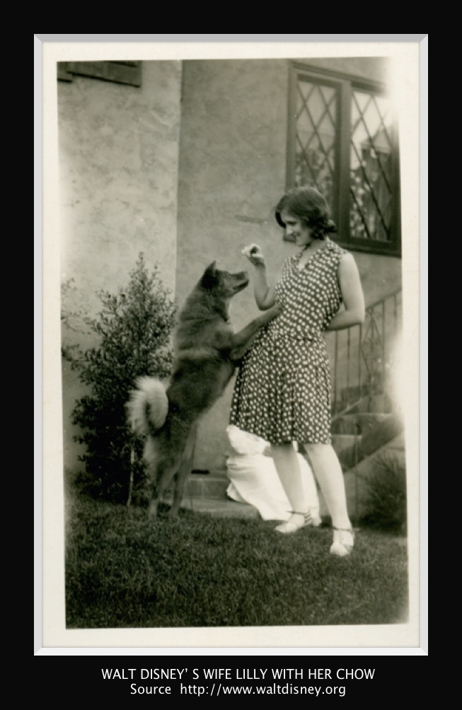 """photo credit and text below from http://www.waltdisney.org/blog/walts-valentine Soon after they bought their first home in Los Angeles, Walt wanted a dog. Lilly, however, was not sold on the idea. Walt was determined. He bought a book on dogs and while reading it to Lilly, the Chow Chow caught her attention. She decided that if she had to have a dog, she would be fine with a Chow. The next day, Walt went out and bought a Chow puppy but kept it a secret until Christmas. While Walt and Lilly celebrated Christmas Eve with family at their home, Walt snuck the puppy into a hatbox, topped it with a large bow, and slipped it under the tree. Lilly was given the box and was, at first, rather disappointed: she loved to buy her own hats. Suddenly, the box moved and Lilly let out a scream as a little puppy poked its head out! From that moment on, Lilly was smitten with the dog they named Sunnee, never letting him leave her sight. Walt shared that he """"never saw anyone so crazy about an animal."""" This story later became the inspiration for Walt's film Lady and the Tramp when Lady pops out of the hatbox on Christmas."""