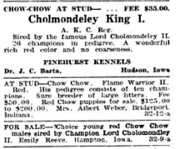 1921 DOG FANCY WITH 2 KENNELS NAMING 'CHUMLEY' IN THEIR PEDIGREES