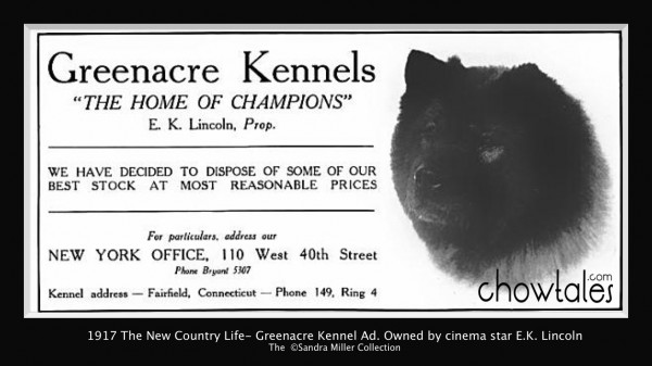 Greenacre 1917 The New Country Life e k lincoln greenacre kennels