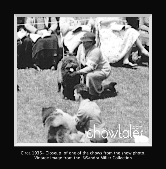 1936 RING FULL OF CHOWS - Version 5 (2 of 2)