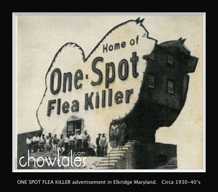 ONE SPOT flea killerhouse and staff Moved to archive