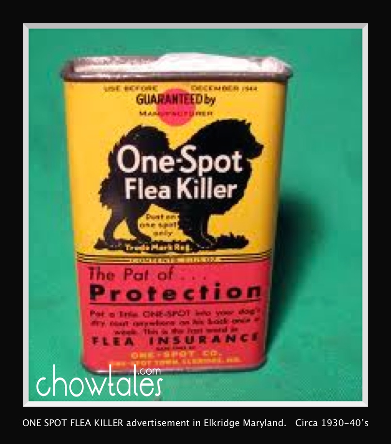 ONE SPOT flea killer in can Moved to archive