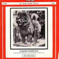 DOGNEWS JUNE 1931 COVER