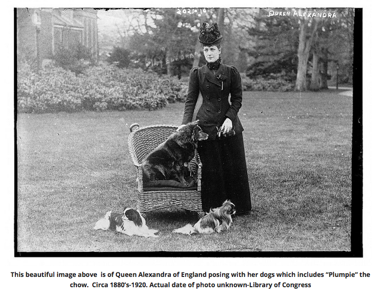 CLICK PHOTO TO ACCESS THE FULL ARTICLE I WROTE ABOUT QUEEN ALEXAMDRA'S CHOW