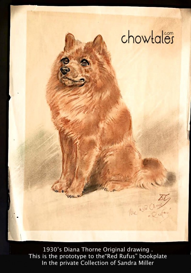 diana thorne the red chow rufus original in our collection. This is an original drawing from her sketchbook