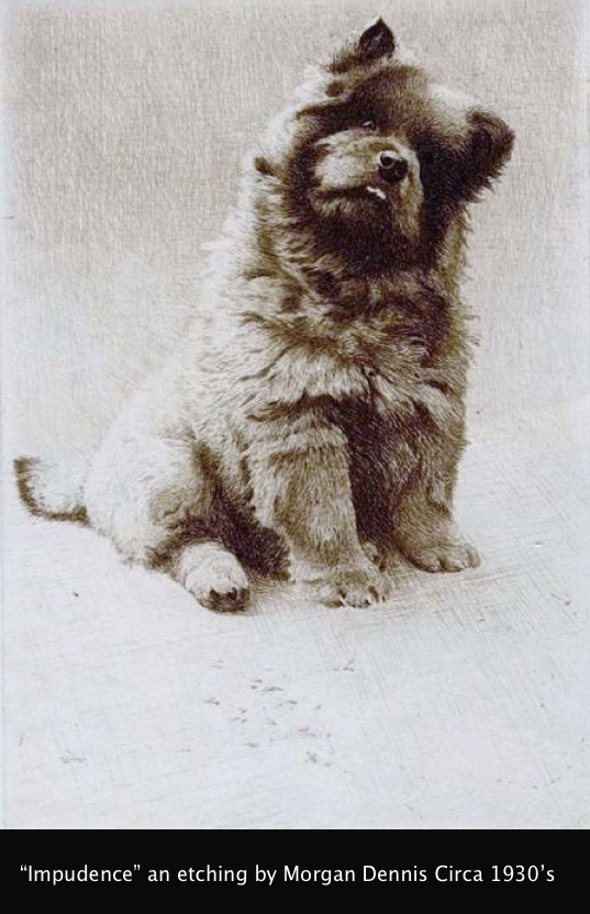 "Miniature drypoint etching of the Chow Chow ""Impudence"" by Morgan Dennis (American 1892-1960) This miniature dry-point etching is signed by the artist in pencil ?Morgan Dennis?. The reverse bears a label ?Original Miniature Etching by Morgan Dennis ?Impudence? Published at 10/6?"