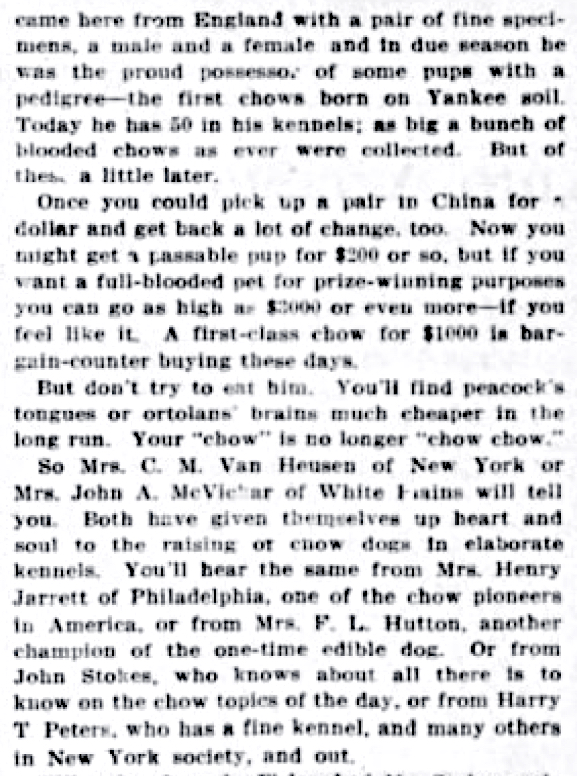 1913 ARTICLE DOG DEWEY MADE FAMOUS WAS A CHOW