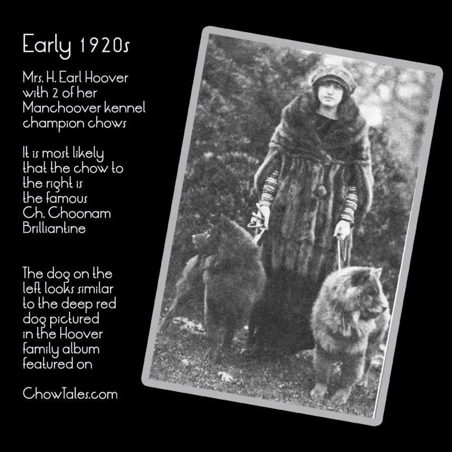 Mrs H. Earl Hoover of Manchoover Chows in the early 1920's Dogs in Review March 2016