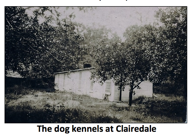 The dog kennels at Clairedale