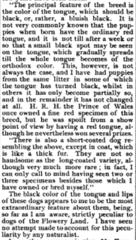 The Fanciers' Journal 1890 Chinese Puzzle 2