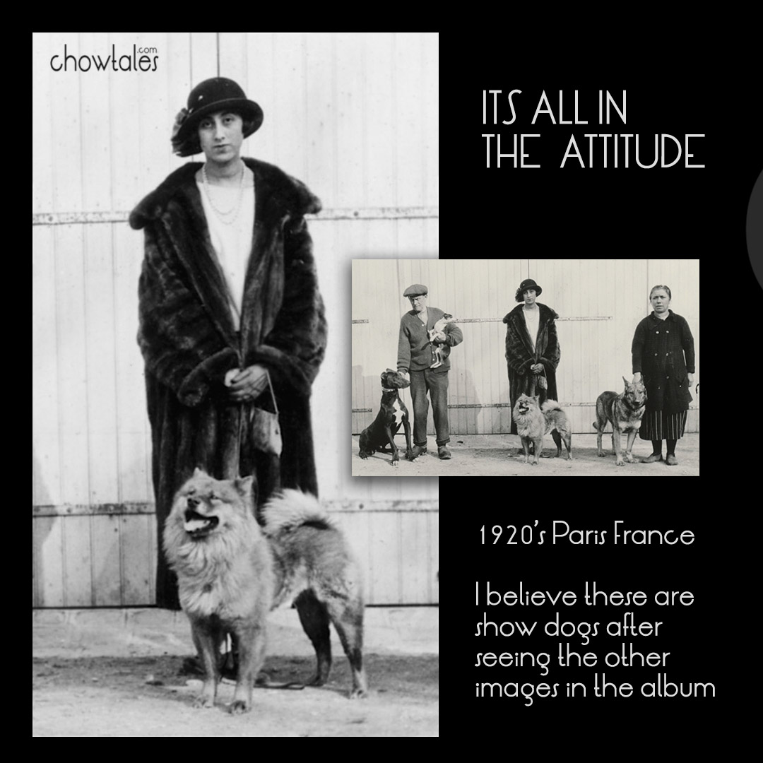 ITS ALL IN THE ATTITUDE COLLAGE