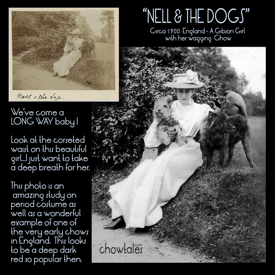 NELL AND THE DOGS COLLAGE