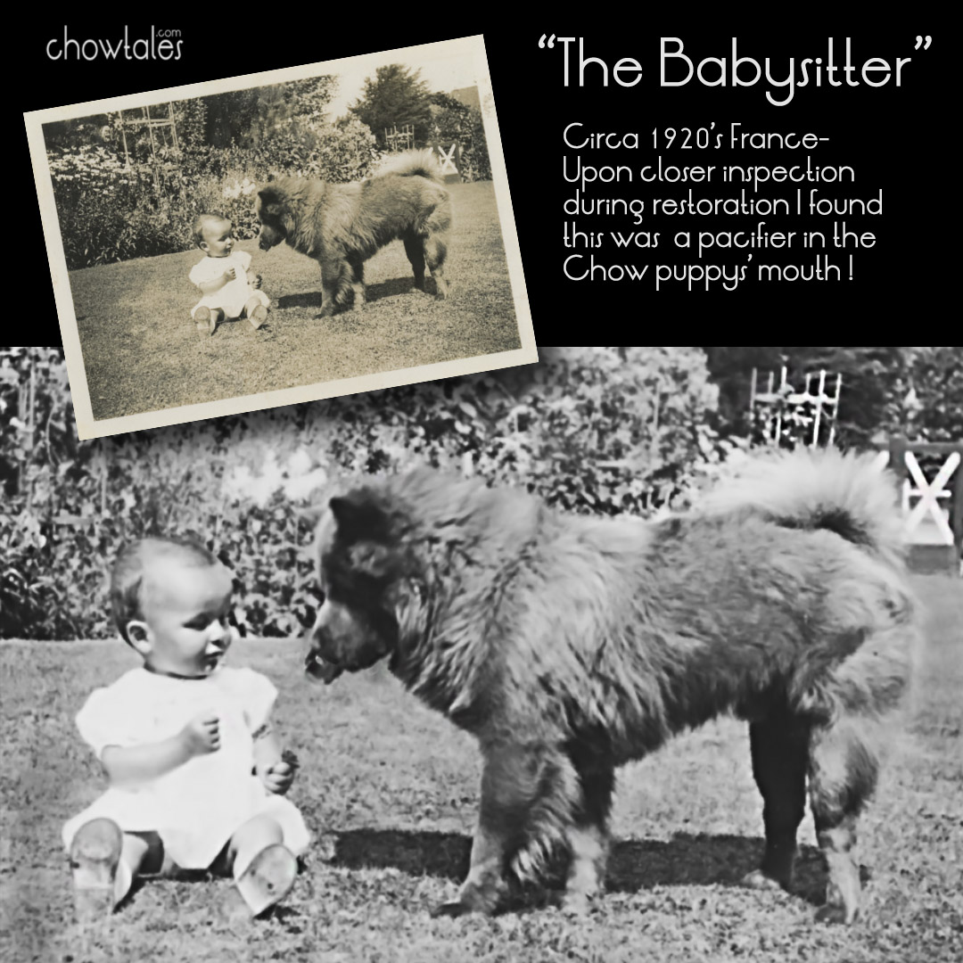 THE BABY SITTER COLLAGE