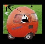 ROADTRIP !!!! ….Join me on our panda, moonbear and ellie journey